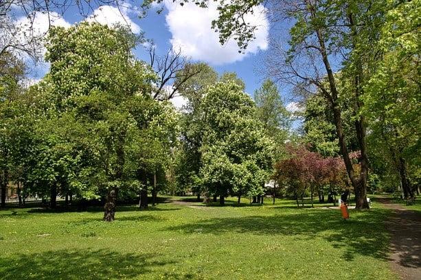 Park na ulicy Kilińskiego im. Jana Kalińskiego